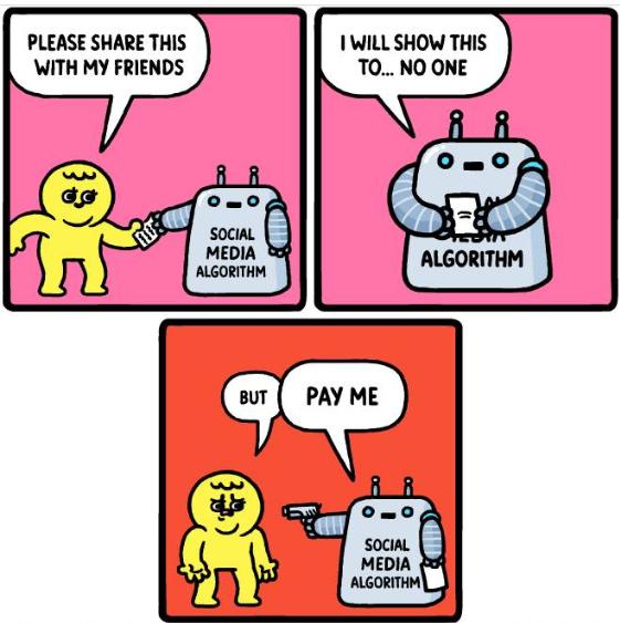 Social media algorithm meme